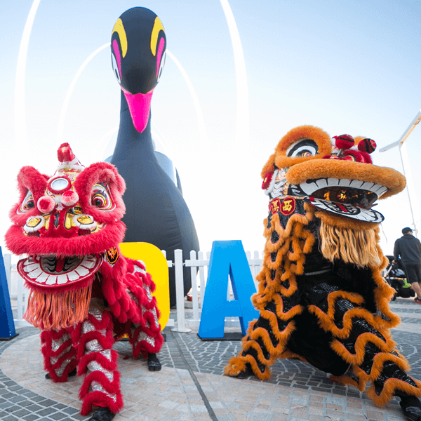 Embracing the history of our state with Shinju Matsuri Lion Dancers